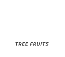 BC Tree Fruits logo. Web development project by local Kelowna design and marketing agency, Csek Creative.